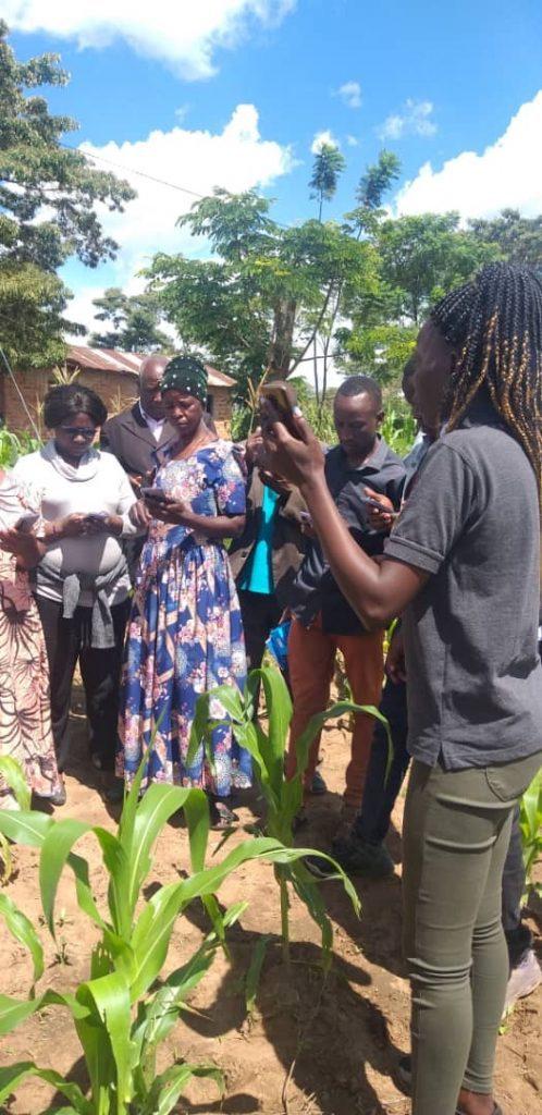 Farmers explore practical training